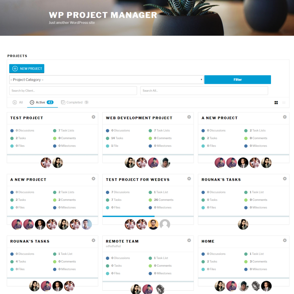 WP project manager frontend