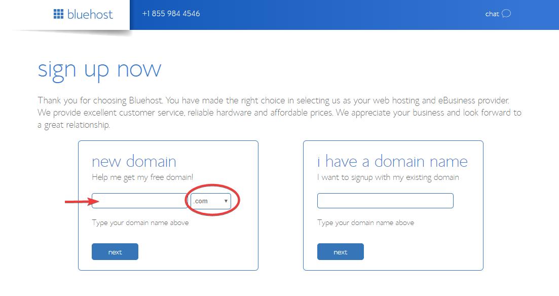 Domain name registration for starting a blog