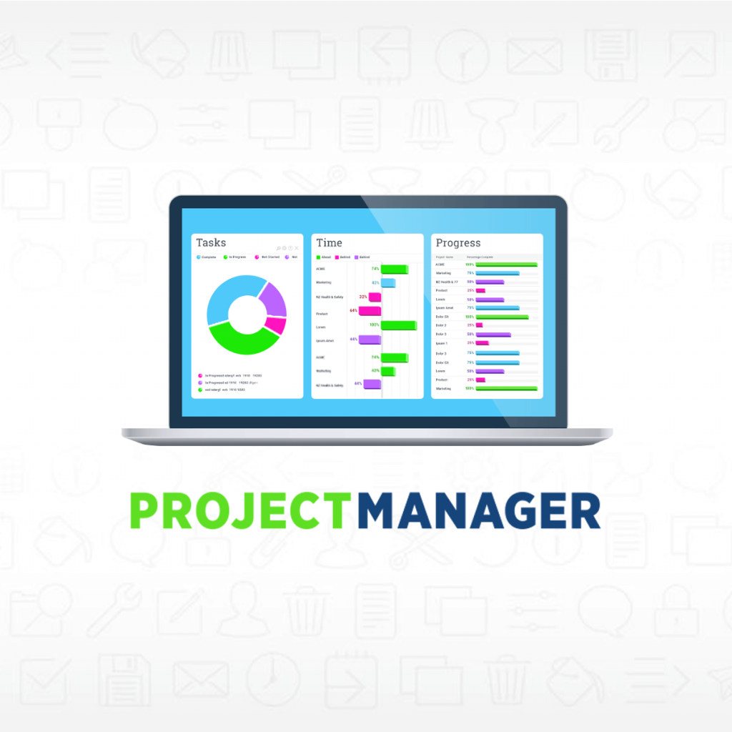 Project management software project management goals